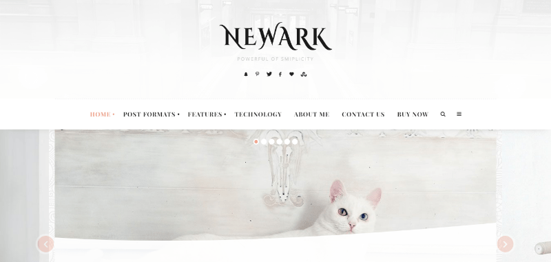 Newark themes wordpress creer blog
