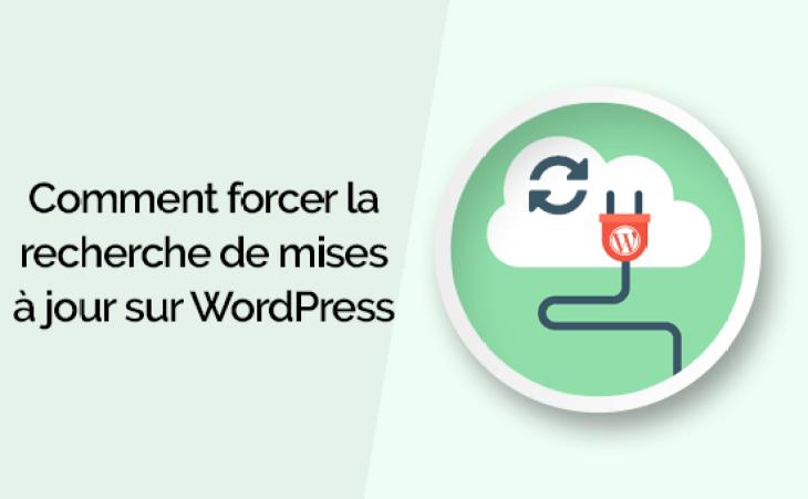 comment forcer la recherche des mises à jour WordPress.png