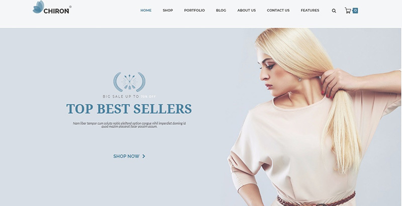 Chiron themes wordpress creer site e commerce boutique en ligne store