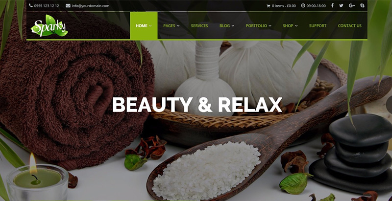 Sparkly themes wordpress creer site web agence entreprise pme