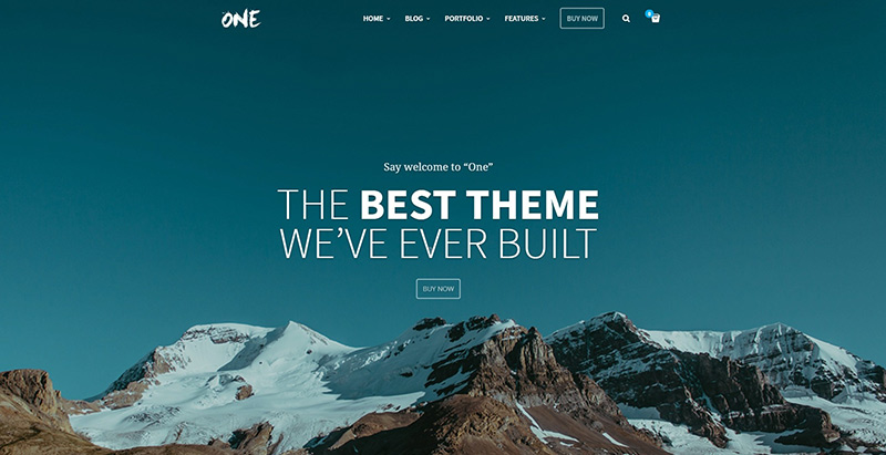 One themes wordpress creer site internet communautaire forum bbpress