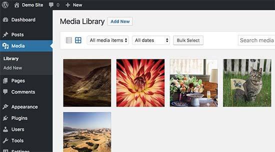 biblioteca de mídia wordpress.jpg