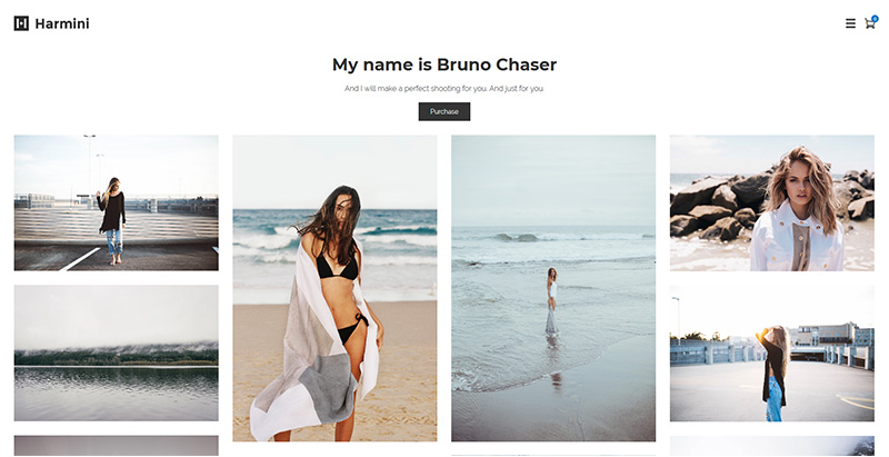 Harmini Themes Wordpress Creer Site Web Portfolio Photographe Artiste