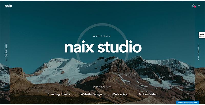 meilleurs thèmes WordPress - Naix