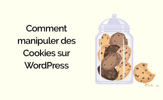 comment manipuler des cookies sur WordPress.png