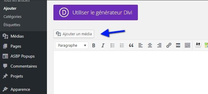 botão da biblioteca WordPress.jpeg