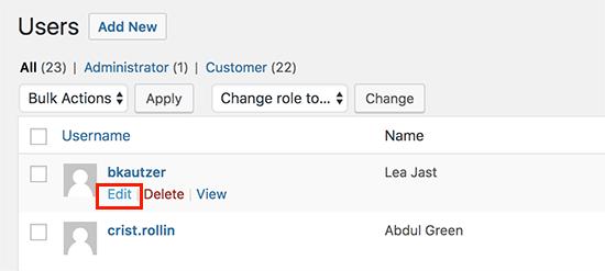 lista de usuários WordPress.png
