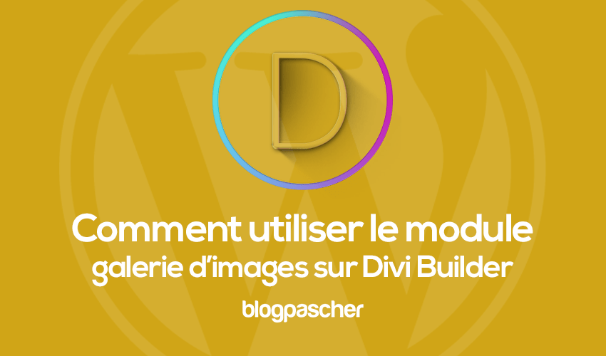 How to use the image gallery module on divi