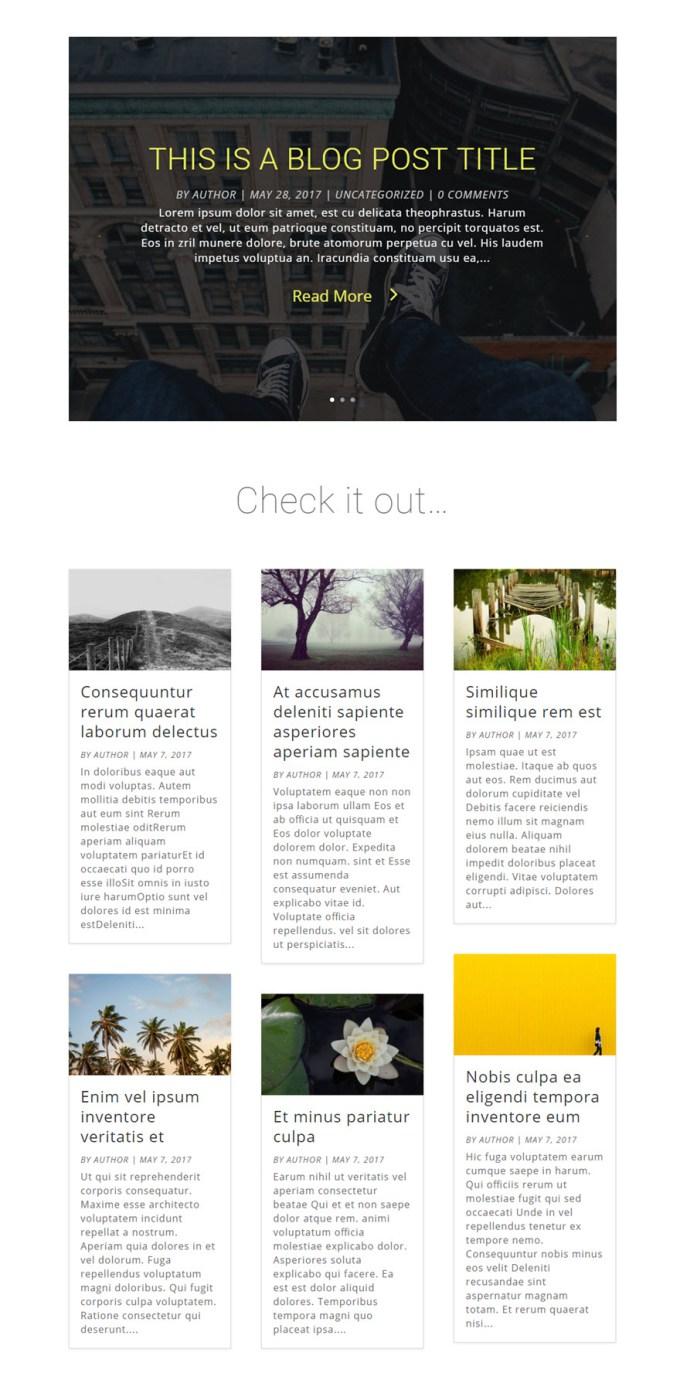 contoh blog divi.jpg