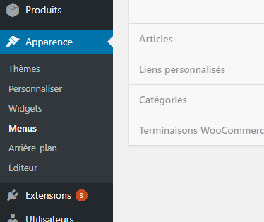 menu wordpress divi.png