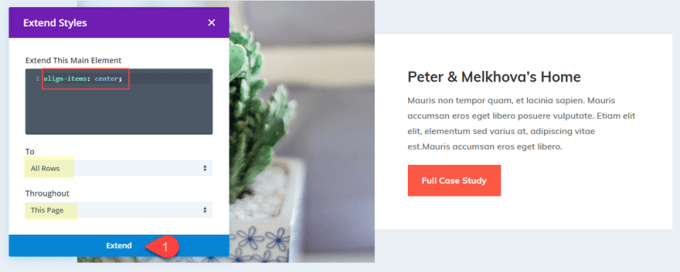 expand styles on divi.png