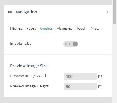 onglet navigation revolution slider.jpg