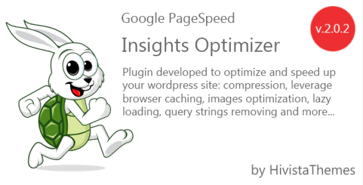 Google pagespeed insights optimizer plugin optimizer