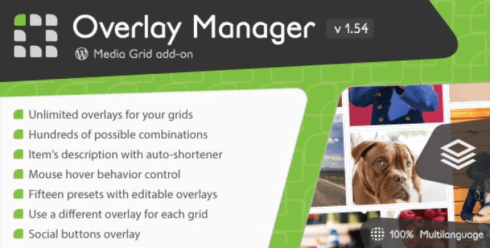 Media grid overlay manager add on plugin wordpress