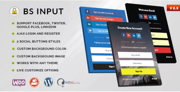 meilleurs plugins WordPress - Bs input