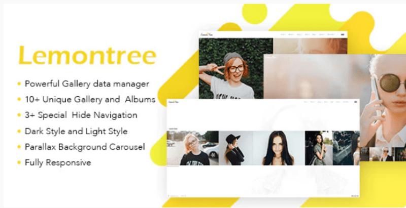Lemontree themes wordpress creer site web portfolio photographe artiste