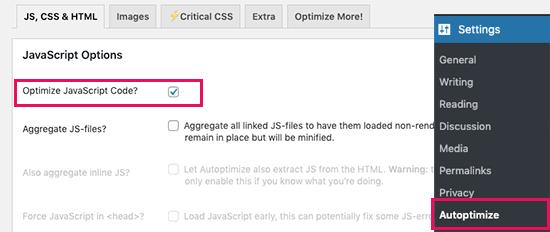 Comment corriger blocage rendus javascript css wordpress blogpascher 6
