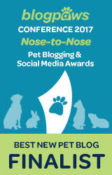 2017 BlogPaws Nose-to-Nose - BEST NEW PET BLOG FINALIST badge