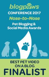 2017 BlogPaws Nose-to-Nose - BEST PET BLOG VIDEO FINALIST badge