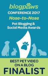 2017 BlogPaws Nose-to-Nose - BEST PET BLOG VIDEO FINALIST badge
