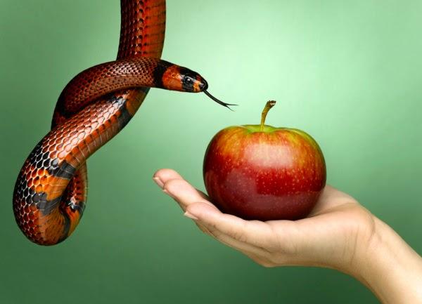 pecado - 7 Pecados Profissionais | Veja a lista do que não fazer no ambiente de trabalho