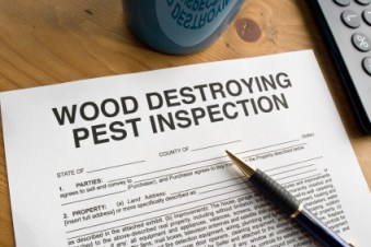 Wood Destroying Pest Inspection Document