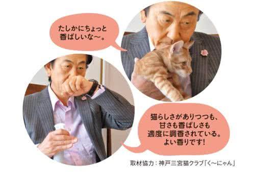 貓咪額頭味的香水