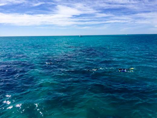 Ningaloo Reef from boat