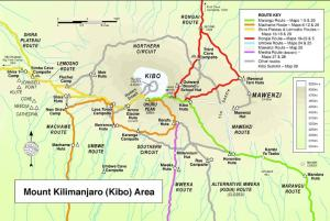 GUEST FEATURE: Mount Kilimanjaro: Reaching Africa's Highest Peak