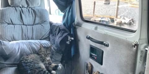 Living in a Van Full-time: My Experience