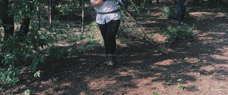 Discover Dallas: Volunteering at the Cedar Ridge Preserve