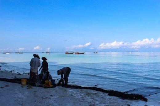 Fishermen Zanzibar Nungwi Beach