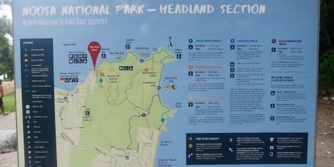 Noosa Heads National Park Coastal Walk