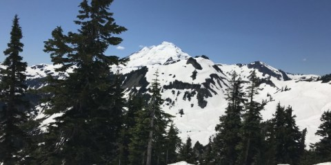 Play in the Snow in July in Mt. Baker, Washington