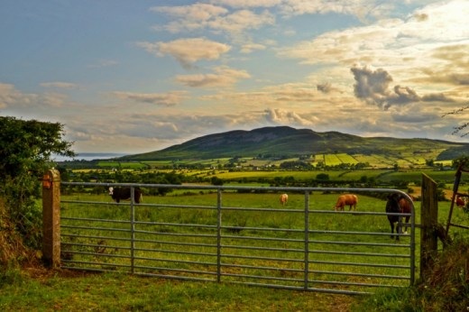 Cooley Mountains