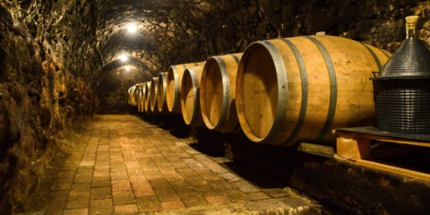 Two days in the Tokaj Wine Region of Hungary