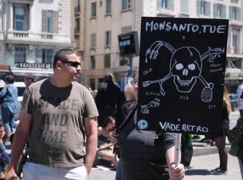 Monsanto-4