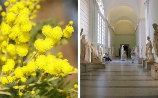 Festa-della-Donna-2016-a-Napoli-musei-Gratis-per-le-donne-640x400.png