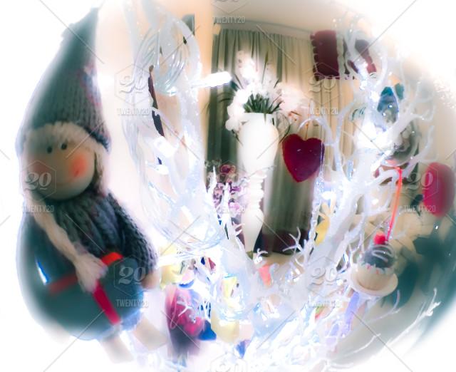 stock-photo-tree-christmas-home-fisheye-epiphany-befana-9a7f032b-dafc-416a-8293-5121a70ed245