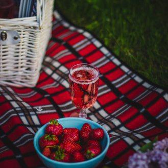 picnic (2)