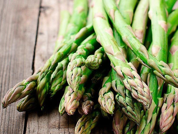 coltivazione-asparago-selvatico_NG1