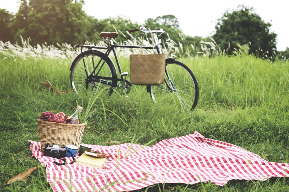 picnicbici.jpg