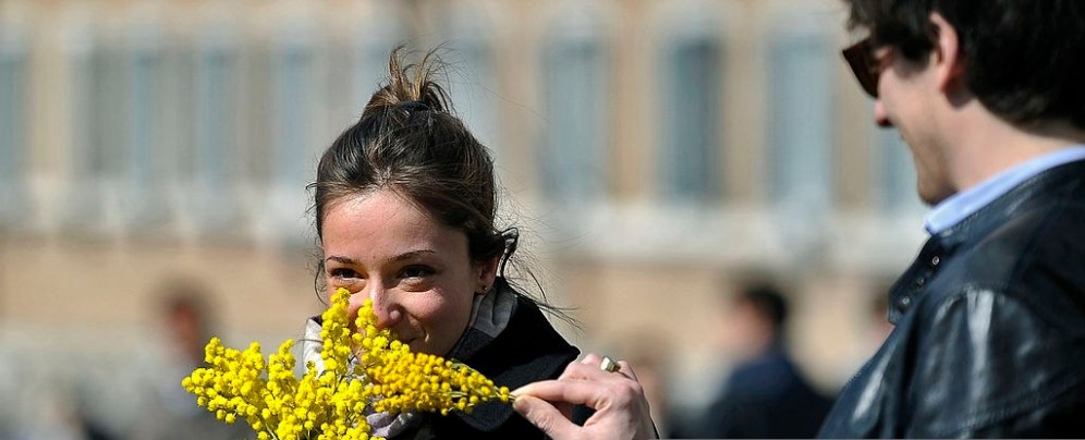 A woman holds a bunche of mimosaoutside the Italian Presidential palace, the Quirinale, to celebrate the International Women's day on March 8, 2012 in Rome. AFP PHOTO / FILIPPO MONTEFORTE (Photo credit should read FILIPPO MONTEFORTE/AFP/Getty Images)