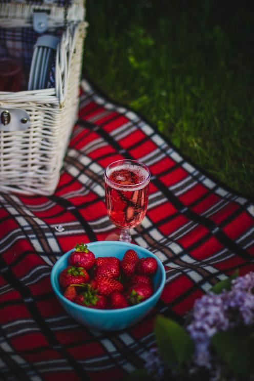 picnic66