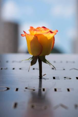 A rose is left at the National September 11 Memorial at Ground Zero in Lower Manhattan, New York City.