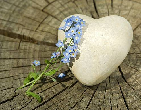 """""""Forget-Me is a sweet heart of stone on a tree stump,"""""""