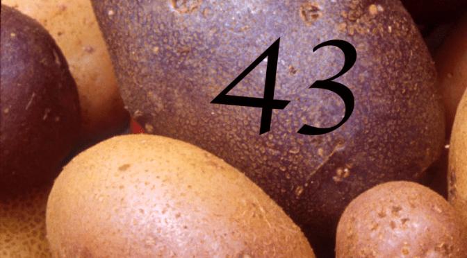 Number 43 – July 3, 2016