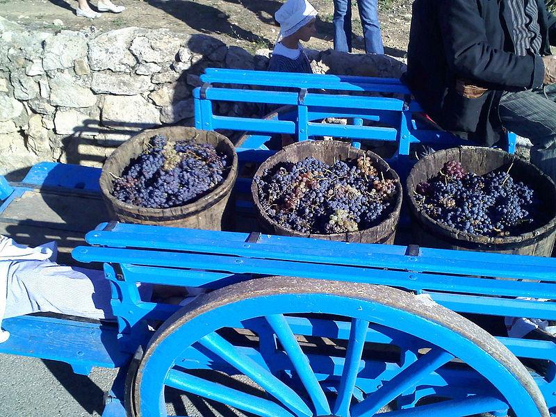 https://i1.wp.com/blogs.agu.org/geospace/files/2012/06/france-grape-harvest.jpg