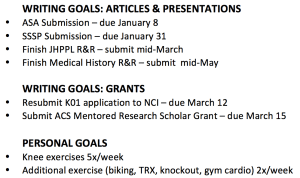 Example semester goals, courtesy of NCFDD