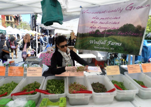 The Union Square Greenmarket operates on Mondays, Wednesdays, Fridays and Saturdays. Photo by Emily Murphy